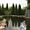 Компания «Грин Сити» Центр ландшафтной архитектуры ООО #473722