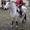 Катание на лошадях в Бресте #523658