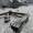 Брест в коттедже на сутки.25 минут погранпереход Варшавкий мост группе до 20 чел #1008598