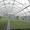Теплица промышленная/фермерская ORIENTE TS #1633914