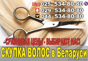Скупка волос в Бресте. Высокие цены. - Изображение #1, Объявление #1449890