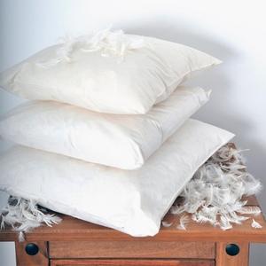 Химчистка подушек выезд на дом Брест - Изображение #3, Объявление #1671687