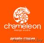 Дизайн студия Chameleon в Бресте