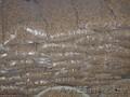 Пеллеты светлые из опилок хвойных пород диаметром 6 мм Мелки оптом