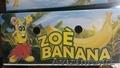 Бананы зелёные оптом